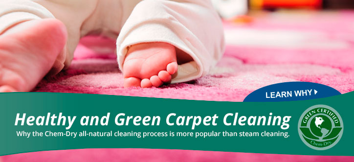 Green Carpet Cleaning Franchise